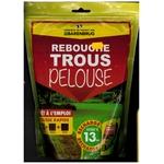 Rebouche Trous pelouse Barenbrug 500g