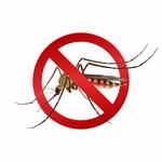 anti-moustiques la jardinerie de pessicart nice