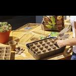 mini serre de culture eda plastique la jardinerie de pessicart 5