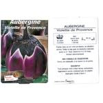 Aubergine violette de Provence plantons plants potager - La jardinerie de pessicart nice - Livraison a domicile nice 06 plantes vertes terres terreaux jardinage arbres cactus