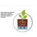 v2 Aquaduo eda la jardinerie de pessicart nice 06100