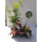 PROMO 3 plantes dépolluantes 10€ La Jardinerie de Pessicart Nice 06100