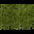bambou la jardinerie de pessicart 06100 Nice