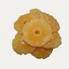 Rondelles d' ananas séchées