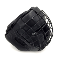 HEAD GUARD WITH STEEL GUARD