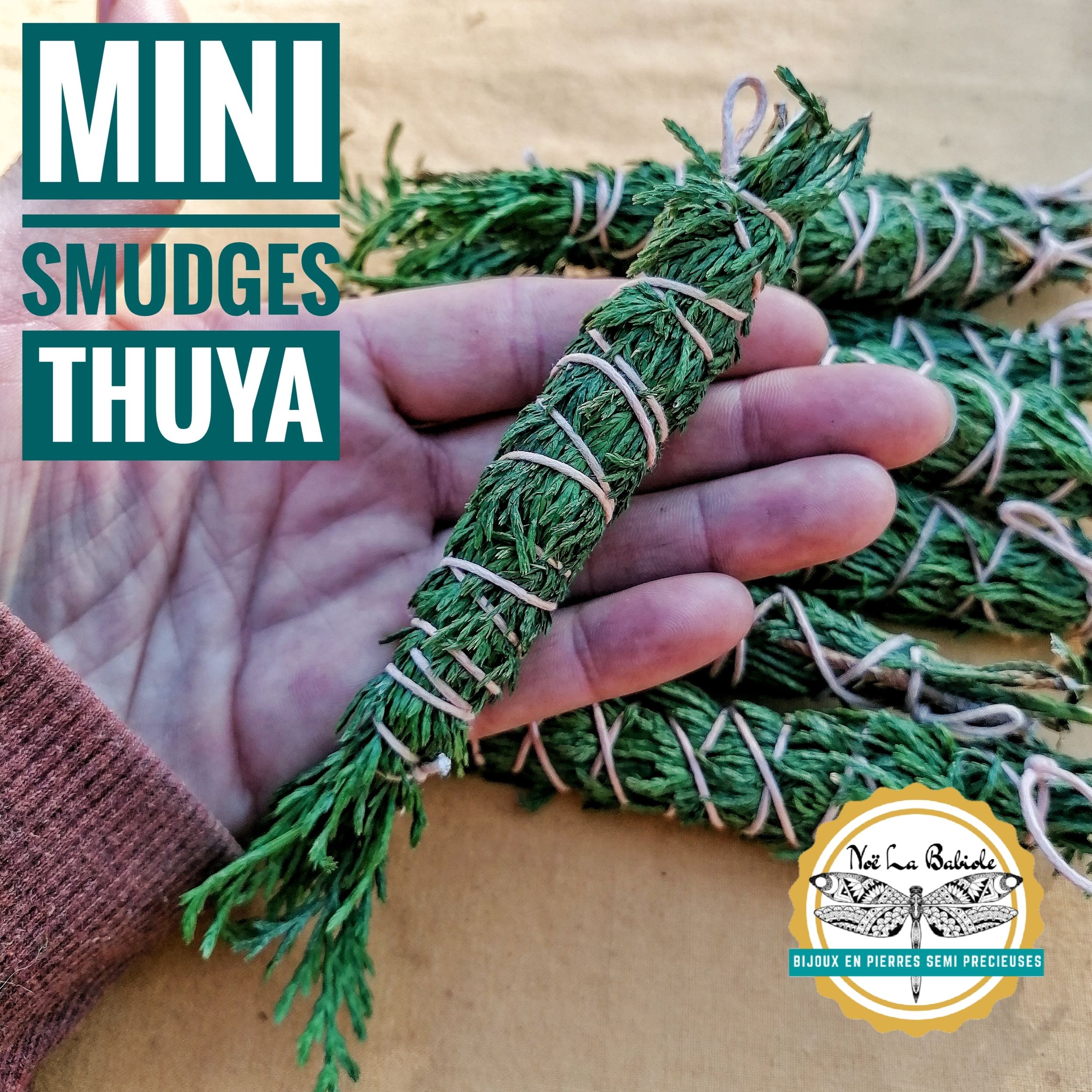 Mini Smudge Thuya - Purification & Harmonie
