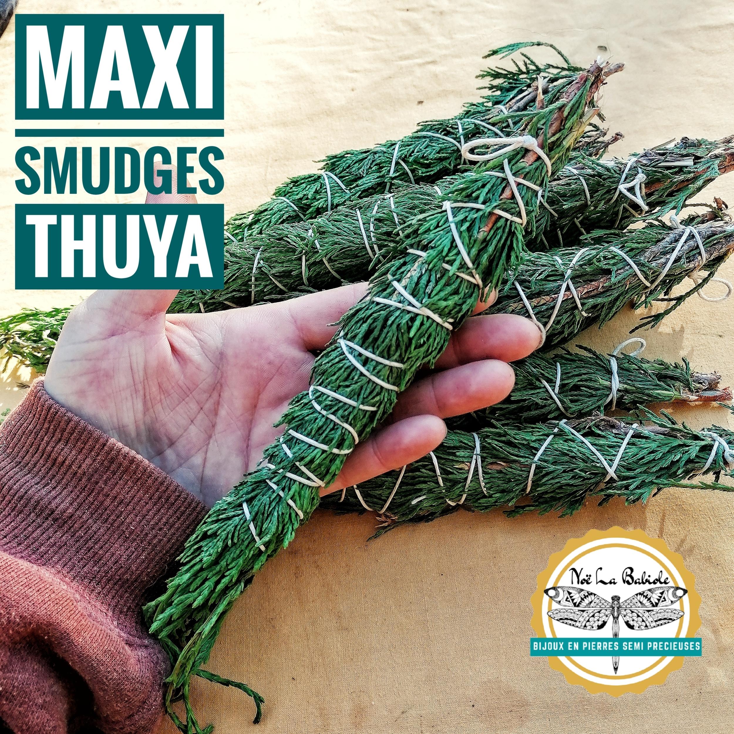 Maxi Smudge Thuya - Purification & Harmonie
