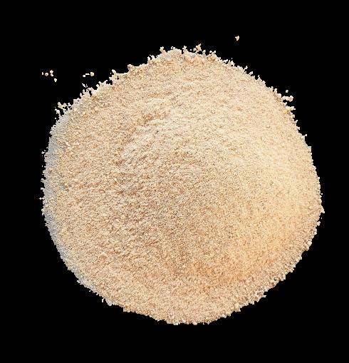 ginseng-poudre-kalô