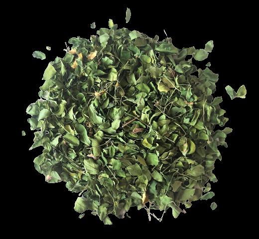 feuilles-moringa-removebg-preview