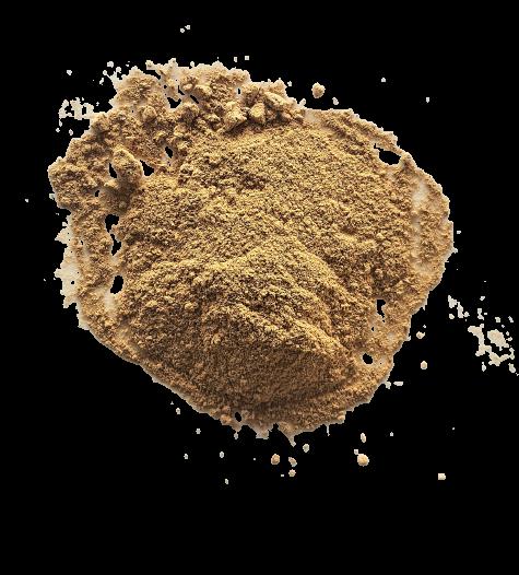 mélange-poisson-kalô