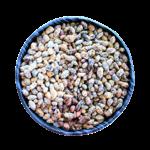 fèves-cacao-enrobées