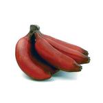 fruit-banane-rouge
