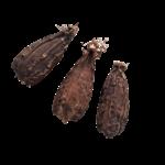 kororima-kalô
