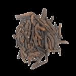 baies-de-selim-poivre-guinée-kalô
