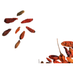 piment-oiseaux-séchés-kalô2