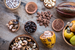 cacao kalô