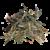 DJINJA-removebg-preview