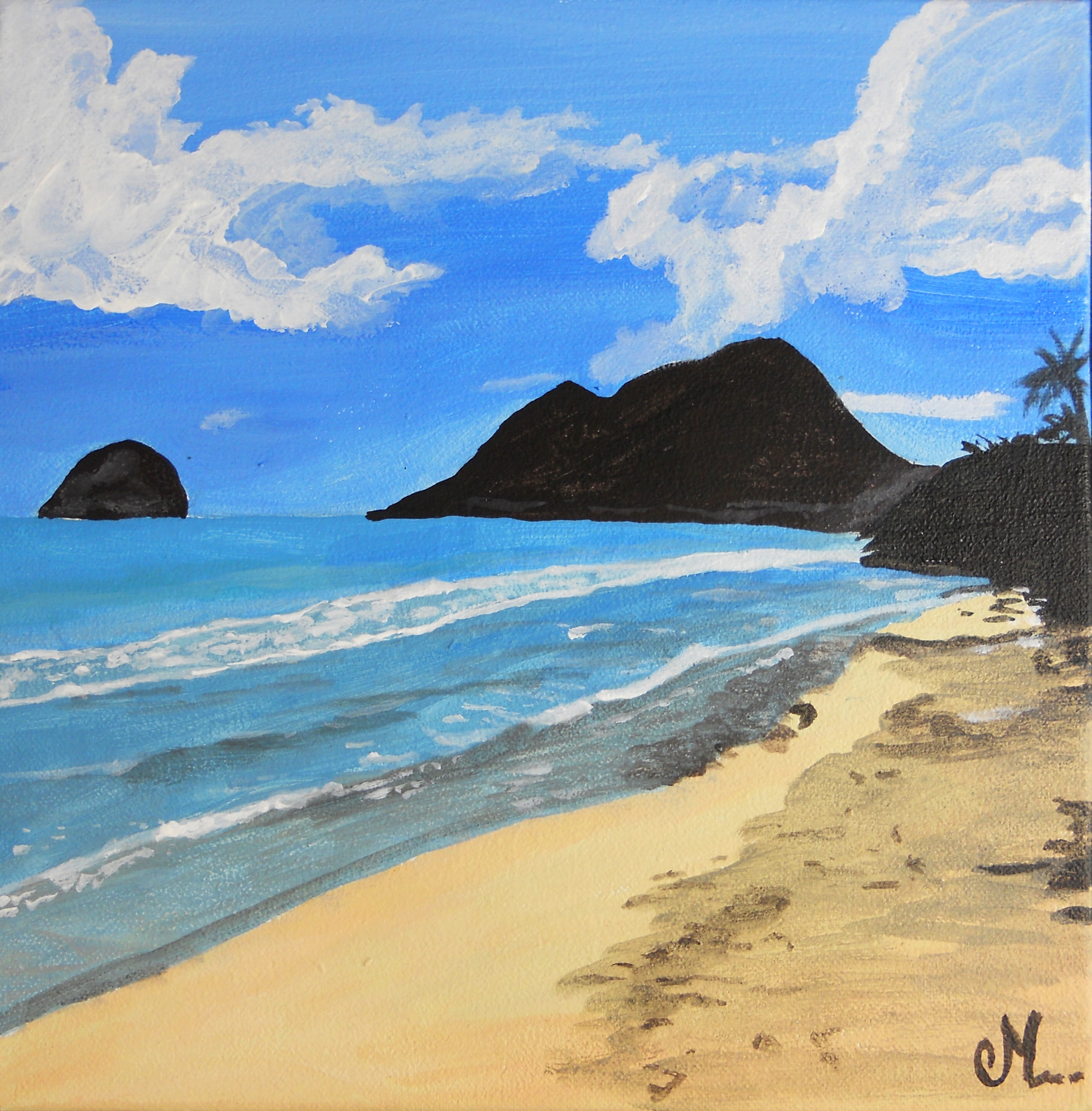 tableau art nature plage mer martinique diamant