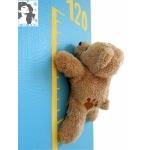 toise bébé ours bleu et beige zoom
