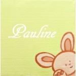 plaque de porte pesonnalisable bébé lapin coffret naissance
