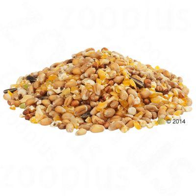 gramix graines entières
