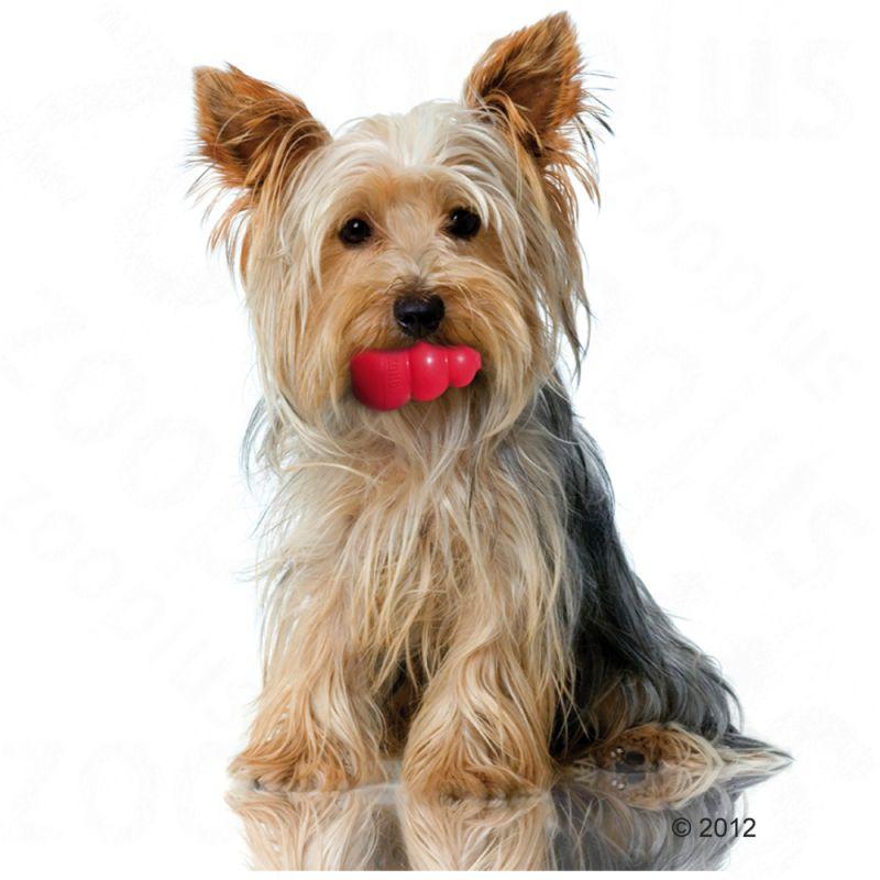 Jouet KONG Classic pour chien 8 cm