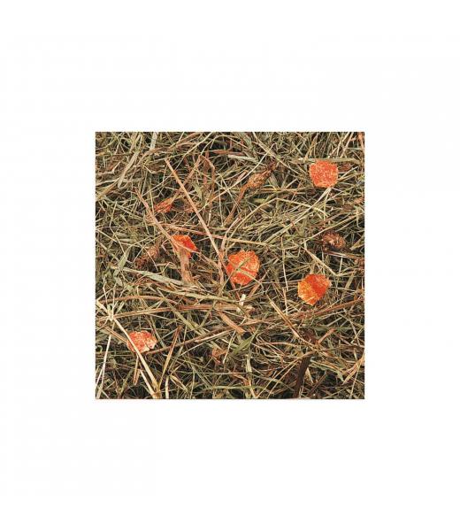 Foin de Pré de carottes 500 g JR FARM