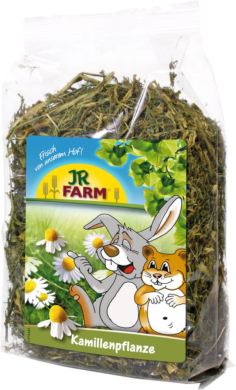 Plante de camomille JR FARM