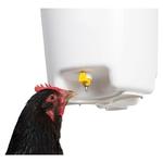 seau-abreuvoir-a-pipettes-12-l poules
