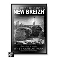 AFFICHE NEW BREIZH N°18-Camelot Park