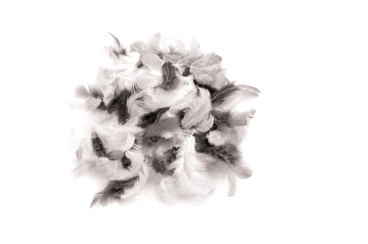 Sachet d\'environ 10 g de plumes douces - assortiment noir/blanc