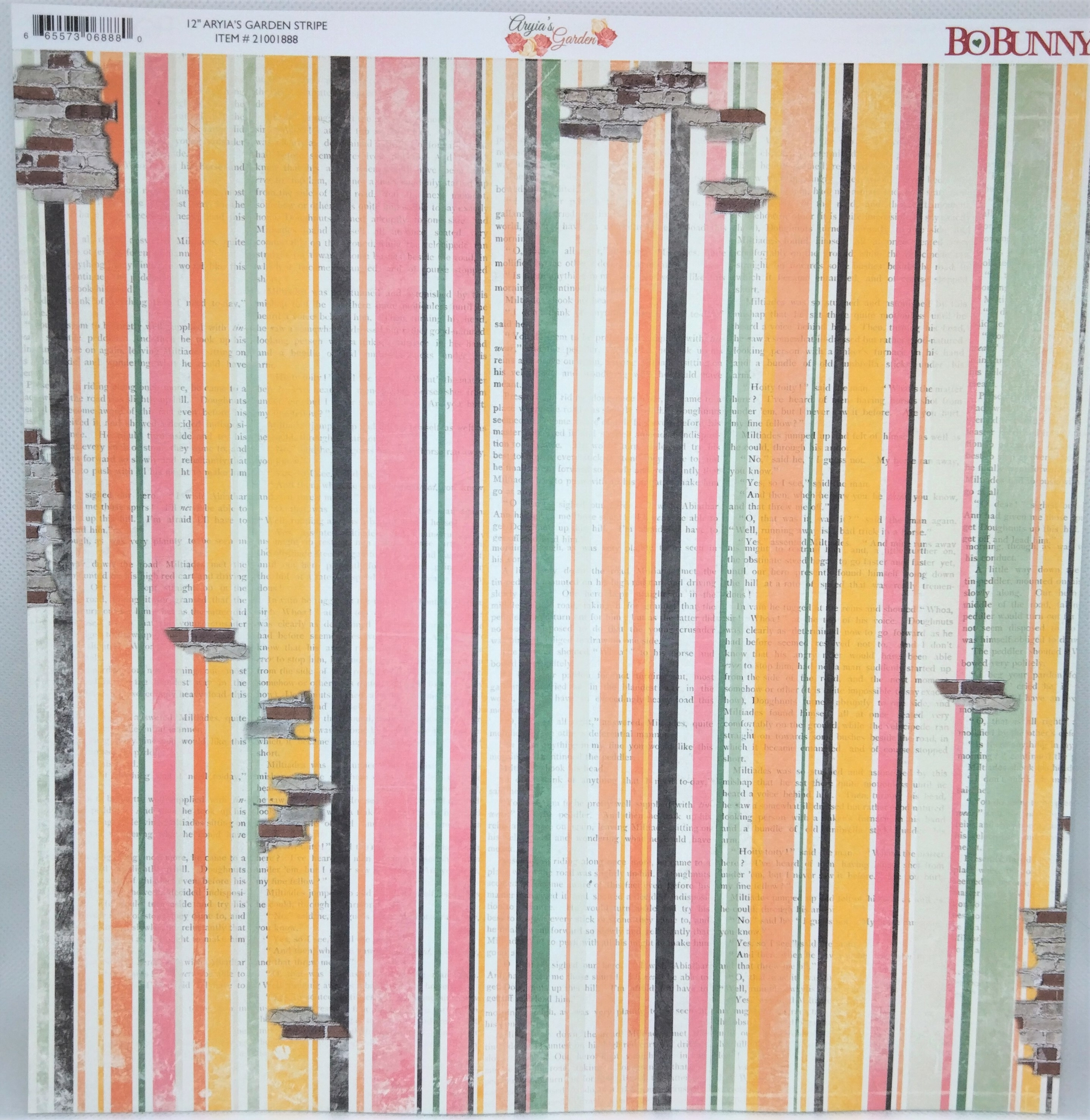 Planche double face 30.5 x 30.5 cms -160 g/m2 - Collection Aryia\'s Garden - Stripe