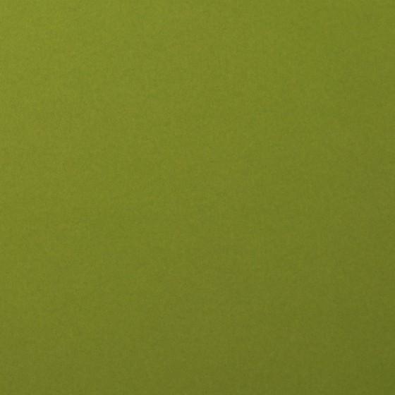 Olive lisse