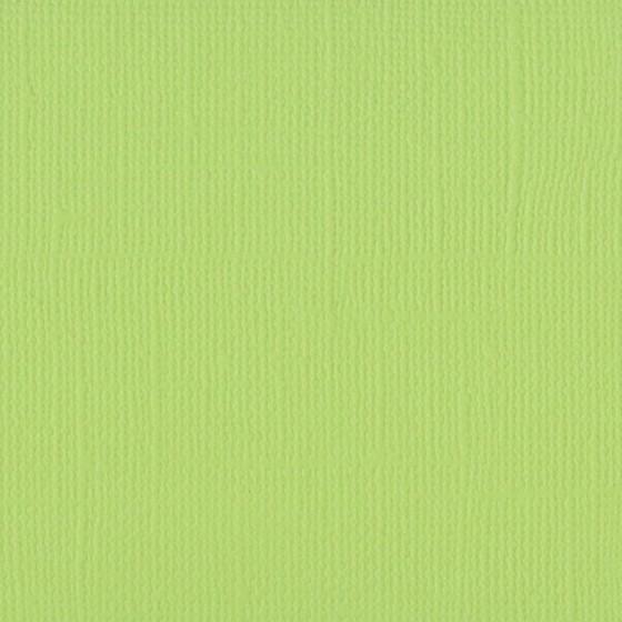 Celery texturé
