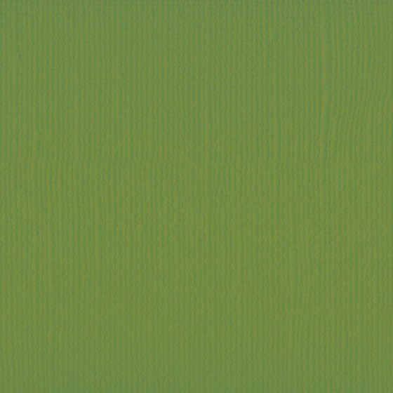 Olive texturé