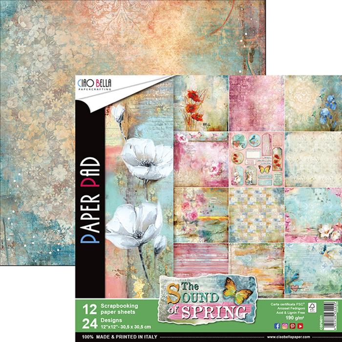Lot de 12 planches de papier à motifs imprimées recto-verso - 30.5 x 30.5 cms
