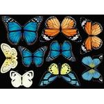 CO168C_det-papillon1