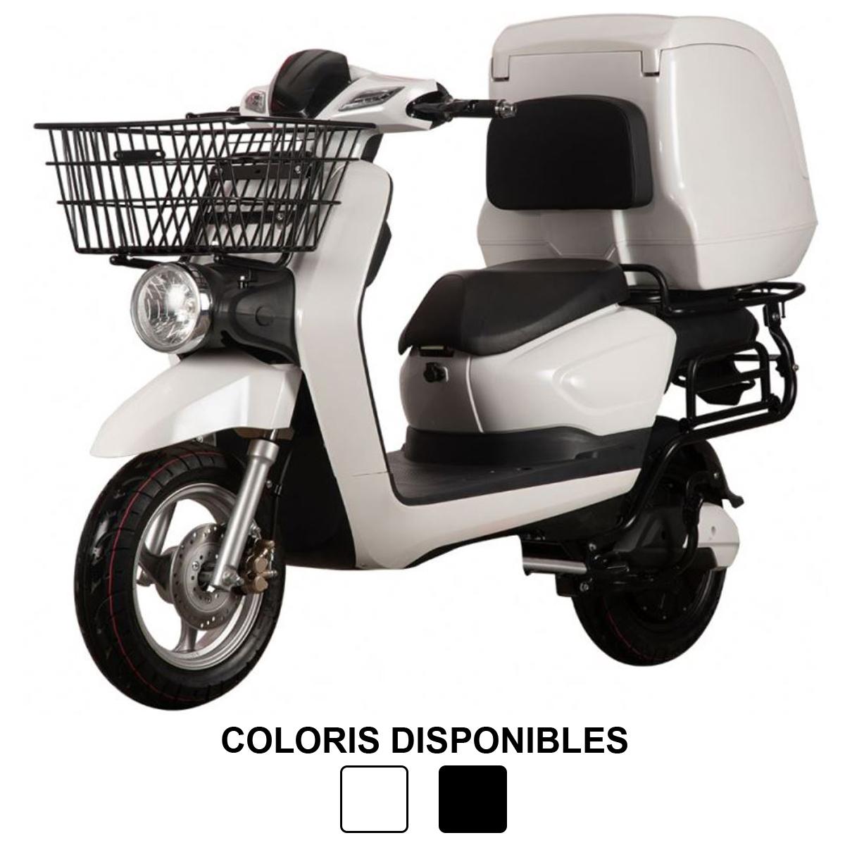 Scooter 2W PRO (2 roues), idéal pour les professionnels de la livraison