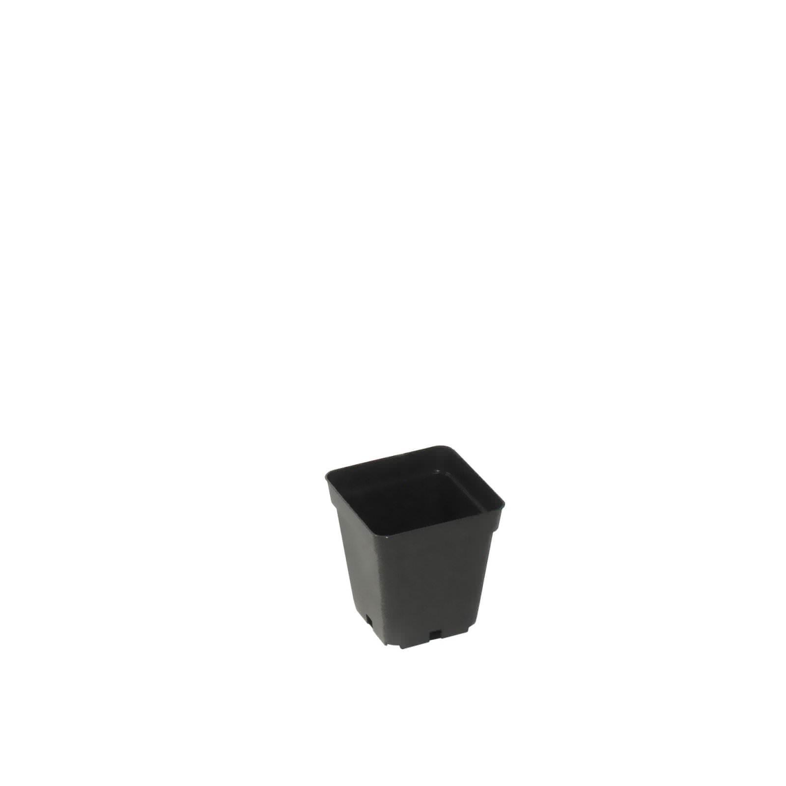pot-10x10-1311351753