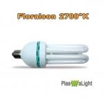 Plasma light ampoule 40w Floraison
