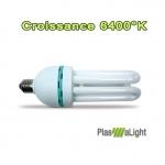 Plasma light ampoule 40w Eco Croissance