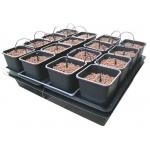 Wilma 16 Pots Système Hydroponique