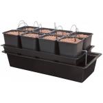 Wilma 8 Plantes Système Complet