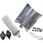 Kit 250w Floraison Plasma Light