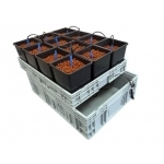 Twelve Pack Systeme Hydroponique Complet 12 Plantes