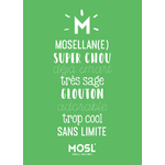 mosellan_enfant_vert