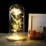 Rose eternelle sous dome en verre inspiré du conte de la Belle et la Bête de la boutique Jouet Bomo - Multicouleurs
