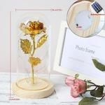 Dimensions Rose eternelle avec LED et sous dome en verre avec inspiré du conte de la Belle et la Bête de la boutique Jouet Bomo