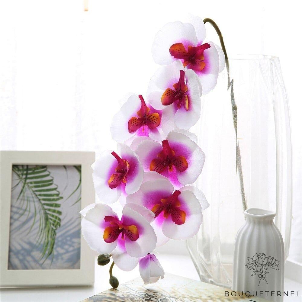 Orchidées Tetraspis Artificielles