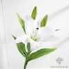 Fleur de Lys Artificielle Blanche | Branche Artificielle | Plante Artificielle | Bouqueternel